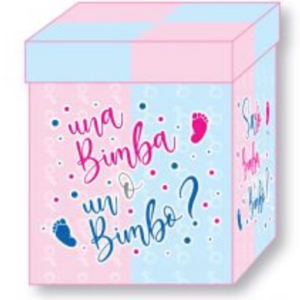 scatola regalo sesso del bimbo o bimba